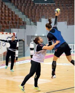 Finistère, partenaire officiel du brest bretagne handball